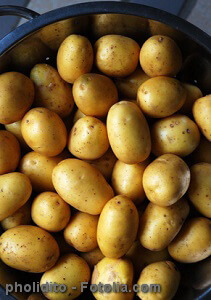 Favorit Kartoffeln lagern - Tipps für lange Haltbarkeit HE29