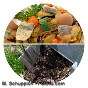Richtig kompostieren – Anleitung, Tipps und Hilfsmittel