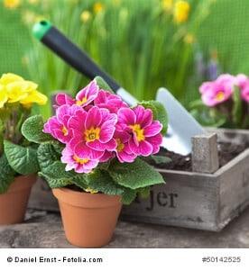 So erleichtern Sie sich die Gartenarbeit enorm