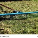 Harke zum Vertikutieren liegt auf Rasen