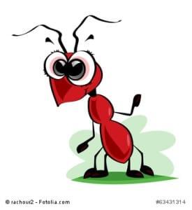 Zimt gegen ameisen im haus wirksam oder nicht - Hausmittel gegen stechmucken im zimmer ...