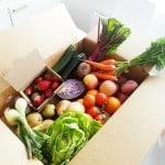 Obst und Gemüse lagern