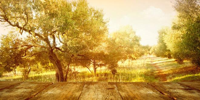 Wie pflegt man Möbel und Accessoires aus Olivenholz richtig?