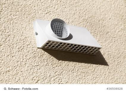 Allergiker wissen Luftfilter zu schätzen