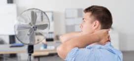 Auch an heißen Tagen einen kühlen Kopf bewahren: Sommerventilatoren
