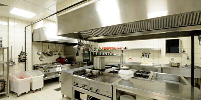Was ist eigentlich ein Küchensalamander?