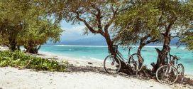 Die schönsten Regionen für Ihren Bike-Urlaub