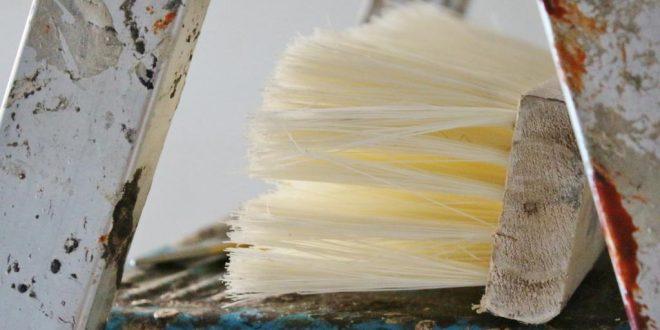 Tapezieren – was gilt es zu beachten?