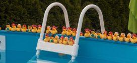 Pool selber bauen – was gilt es zu beachten?