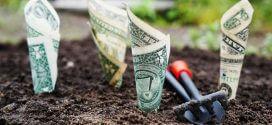 5 Tipps für erfolgreiches Investieren
