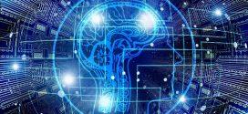 Lebensmittel, die die Gehirnaktivität fördern