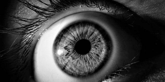 eye-3221498_1920