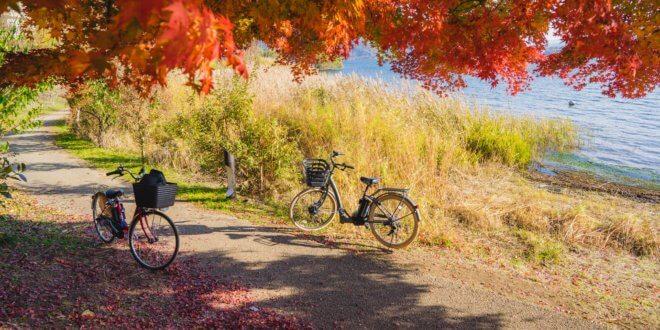 Elbregion: Reiten, Relaxen und Radfahren