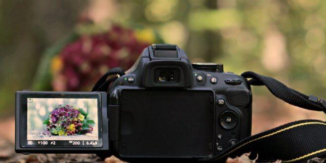 Fotografieren mit Spiegelreflex für Anfänger