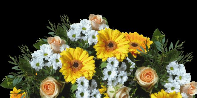 Geschenkideen für die Hochzeit, den Geburtstag oder die Geburt